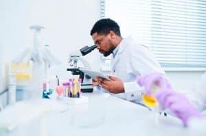 Cientistas isolam célula-tronco produtora de óvulos