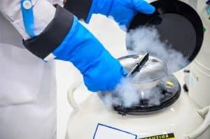 Indicações para o congelamento de óvulos