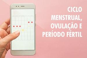Ciclo menstrual, ovulação e período fértil